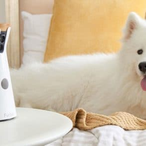 Furbo, une caméra connectée pour chien