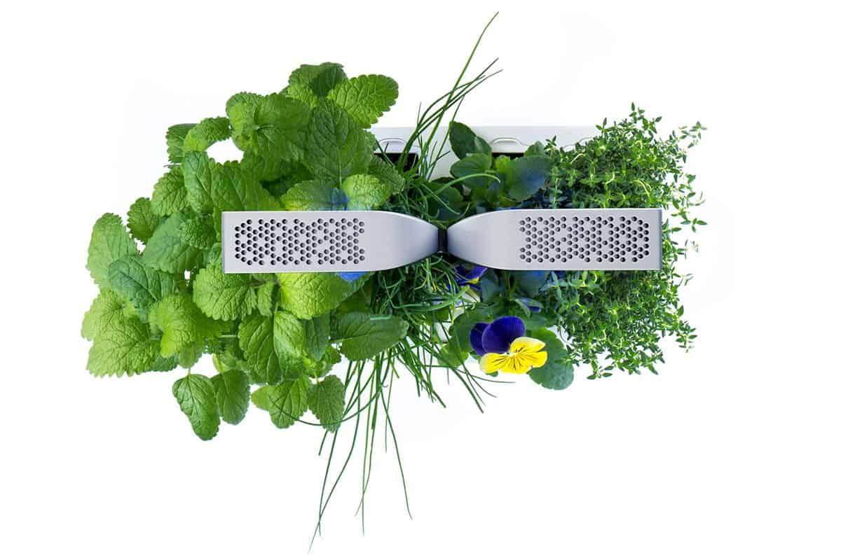 La jardinière connectée d'intérieur made in Véritable