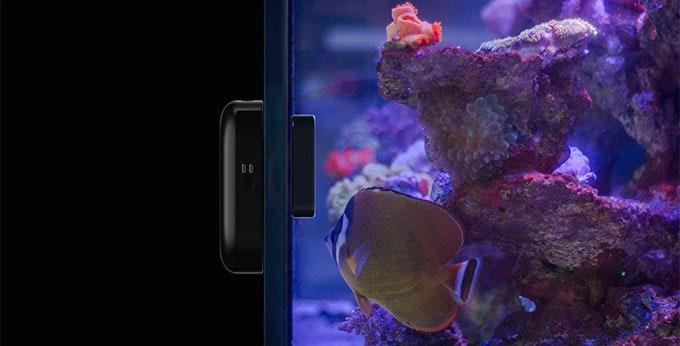 Moai, un robot nettoyeur et une caméra pour votre aquarium
