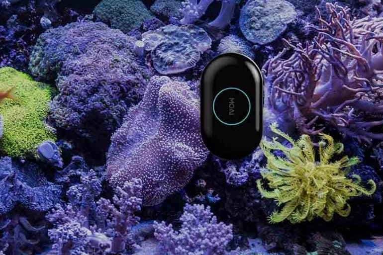 MOAI, le robot nettoyeur connecté pour votre aquarium