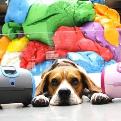 LaÏka, le robot qui accompagnera votre chien durant votre absence