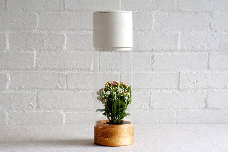 Phabit, le pot de fleur connecté d'un tout autre genre