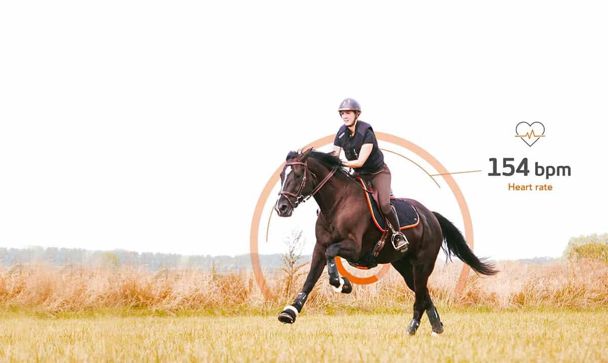 Motion S le capteur au cœur de votre entraînement avec votre cheval