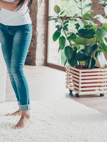Avidsen HomeFresh : Le climatiseur portable connecté eco-friendly